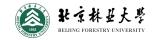 弘成慧考-北京林业大学